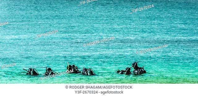 Scuba divers follow their instructor