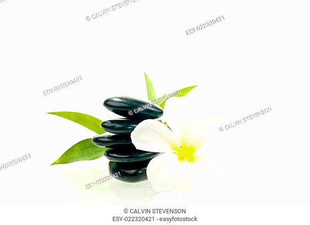 Black zen stone with flower isolated over white