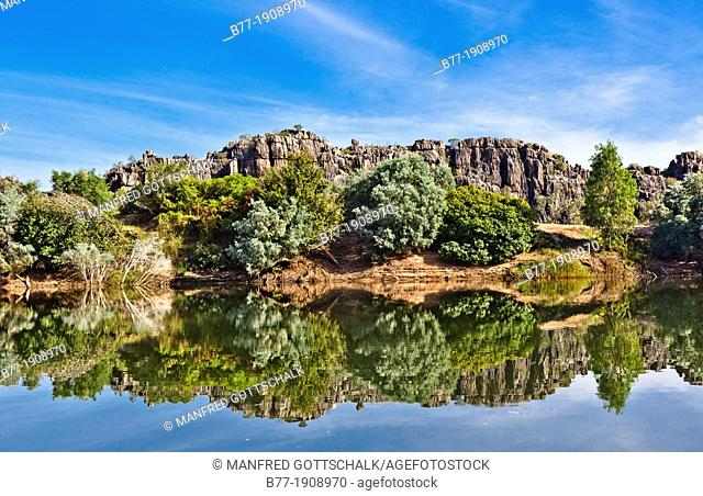 Australia, Western Australia, Kimberley, Geikie Gorge National Park, banks of the Fitzroy River with view of the ancient limestone barrier reef that existed...