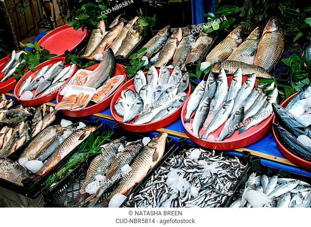 Turkish farmer market. Variety of fresh fish and shrimps with price on the counter