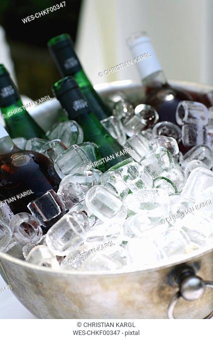Vine bottles in ice bucket