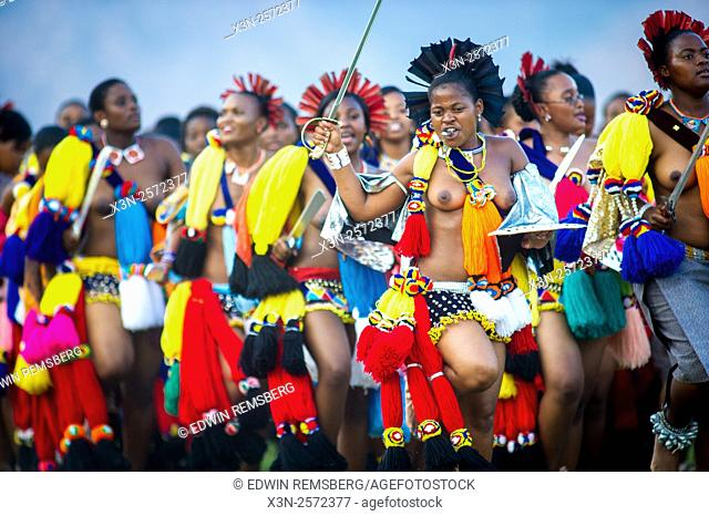 Ludzidzini, Swaziland, Africa - The Swazi Umhlanga, or reed dance ceremony, 100,000 unmarried women , or maidens, celebrate their virginity by bringing reeds...