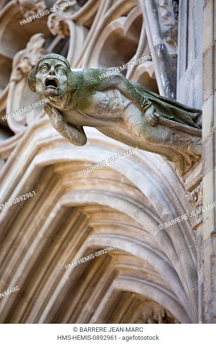 France, Aude, Carcassonne, medieval town listed as World Heritage by UNESCO, St Nazaire Basilica, gargoyle