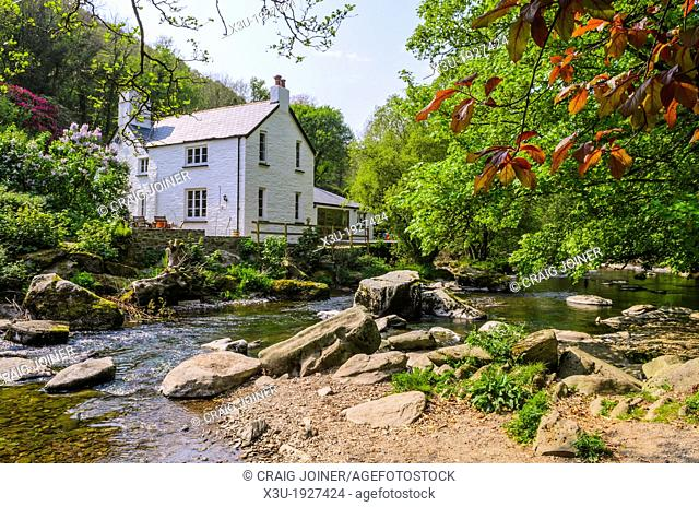 Cottage beside the East Lyn River at Rockford in Exmoor during spring near Lynmouth, Devon, England