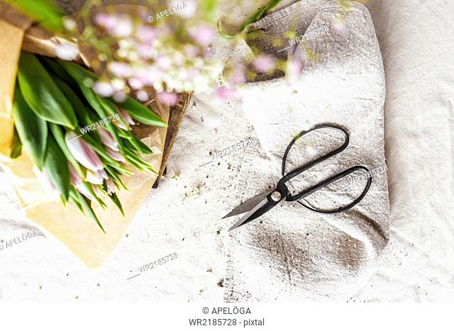 Directly above shot of flowers and scissors on table