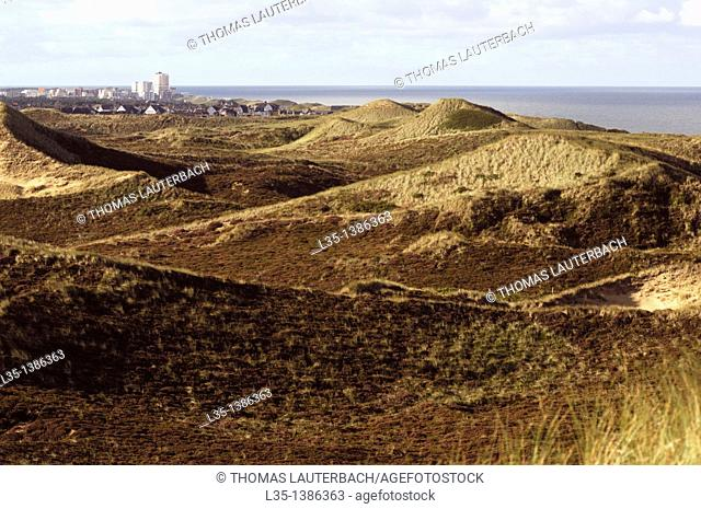 Dunes and North Sea and Westerland in background, Sylt, Germany