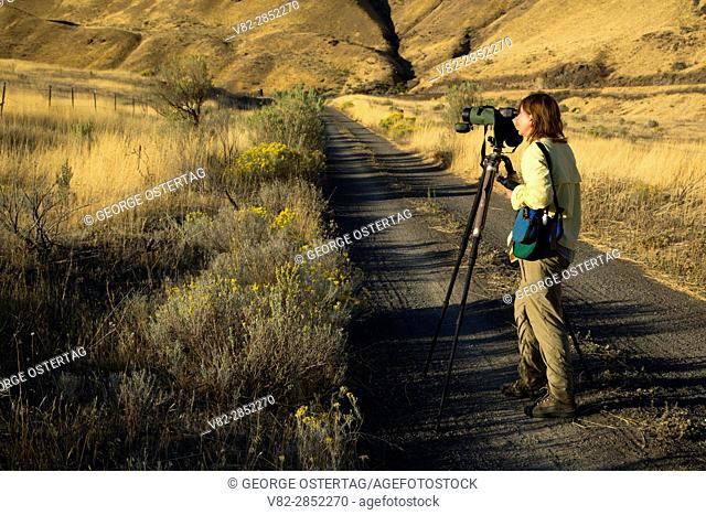 Birding from Railbed Trail, Deschutes River State Park, Columbia River Gorge National Scenic Area, Oregon