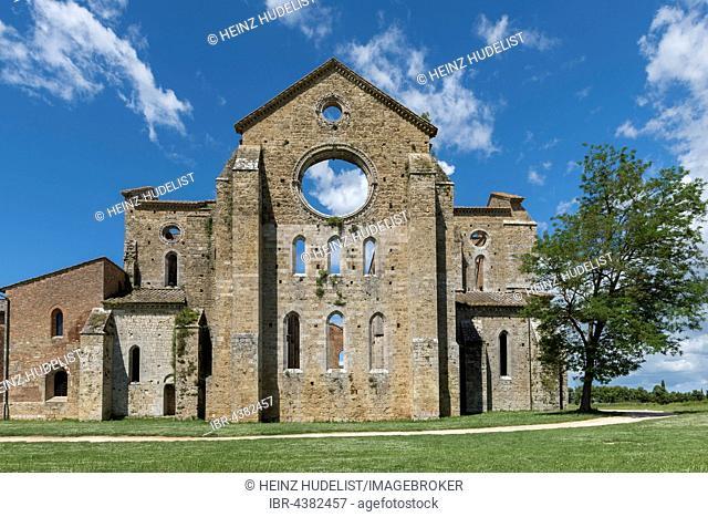 Ruins of former Cistercian Abbey of San Galgano, Chiusdino, Tuscany, Italy