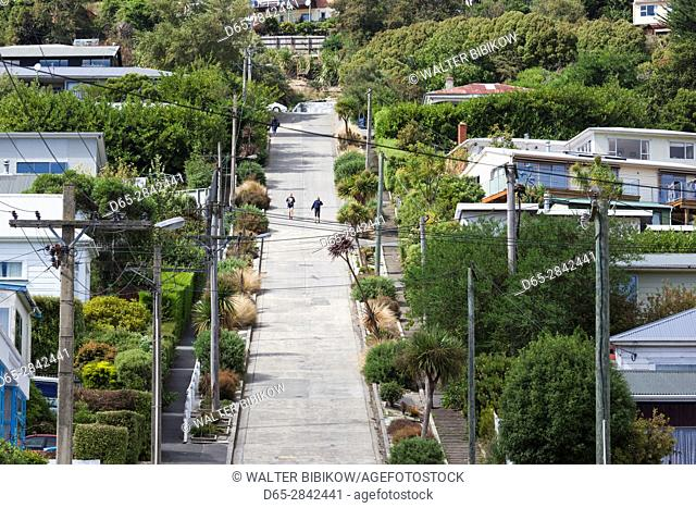 New Zealand, South Island, Otago, Dunedin, Baldwin Street, world's steepest residential street
