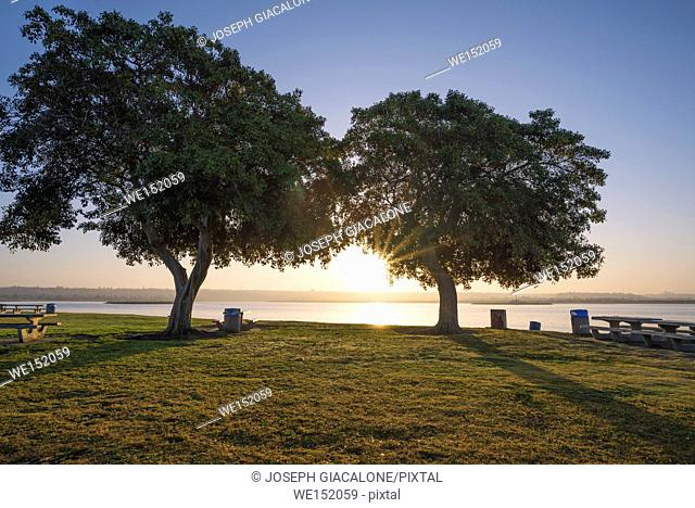 Early morning at Crown Shores Point Park with a view of Mission Bay in the background. San Diego, California, USA
