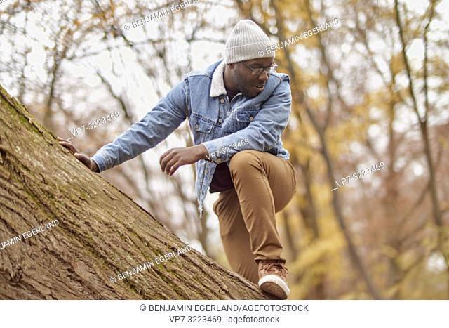 man climbing on tree, nature, in Englischer Garten in Munich, Germany