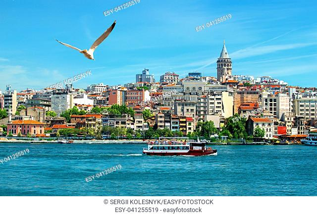 View on istanbul city, Golden Horn bay and Galata Tower