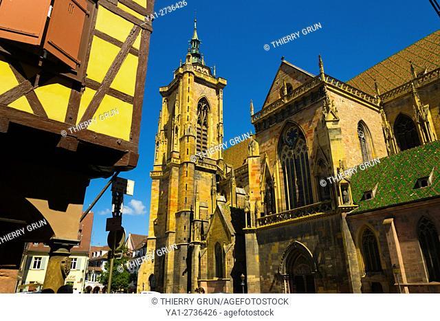 France, Haut-Rhin (68), Colmar town, Saint Martin cathedral