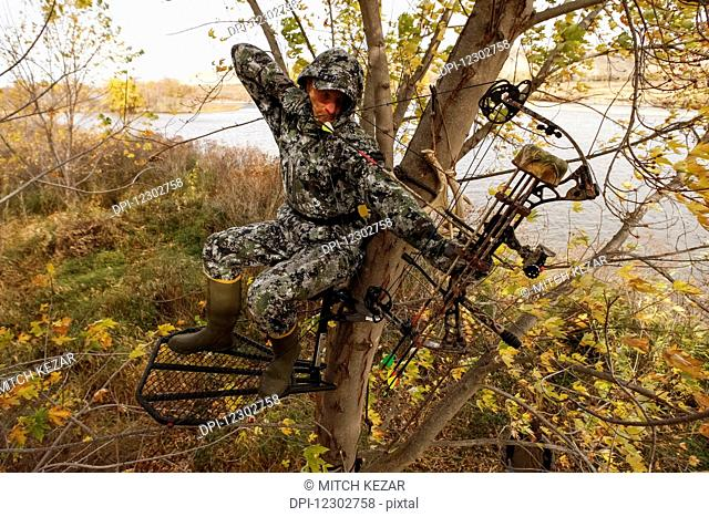 Bowhunter Aiming From Tree Saddle