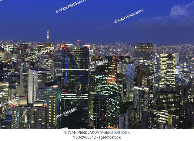 Tokyo at Dusk, Japan