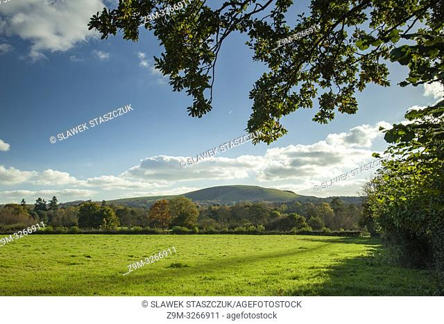 Wolstonbury Hill in South Downs National Park, West Sussex, England