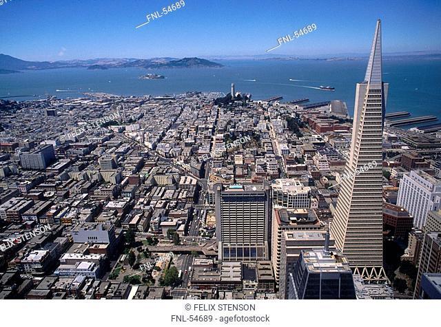 Aerial view of city at seaside, TransAmerica, San Francisco, California, USA