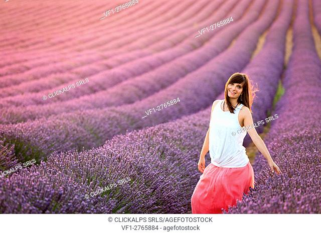 Valensole Plateau, Provence, France. Young girl at sunset in a lavender field in bloom