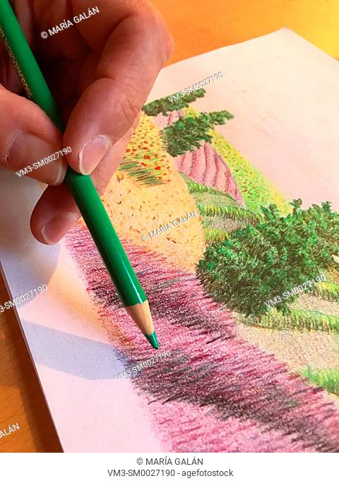 Hand holding a green pencil, colouring an illustration