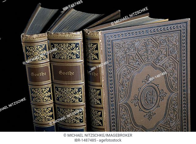 Old books from the 19th century, Goethe volumes