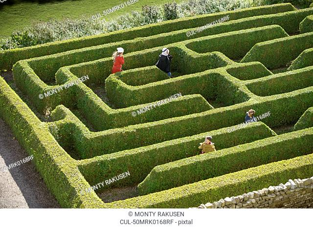 Students exploring hedge maze