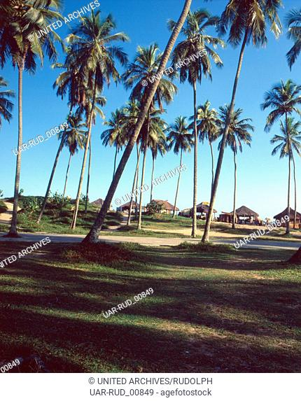 Eine Reise nach Salvador, Brasilien 1980er Jahre. A trip to Salvador, Brazil 1980s