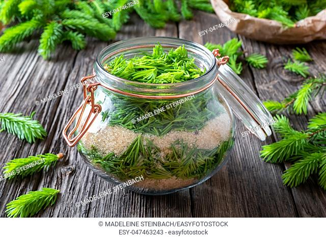 Preparation of herbal syrup against cough from young spruce tips and cane sugar