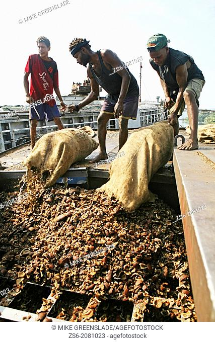 Importing sacks of raw copra, Rabaul, East New Britain, Papua New Guinea