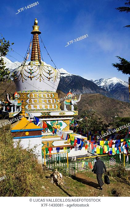 Stupa in Lhagyal Ri,near Tsuglagkhang complex In background the Himalaya mountains McLeod Ganj, Dharamsala, Himachal Pradesh state, India, Asia