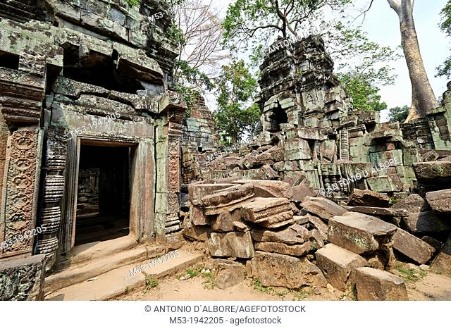Ta Prohm ruin, a temple at Angkor. Siem Reap. Cambodia