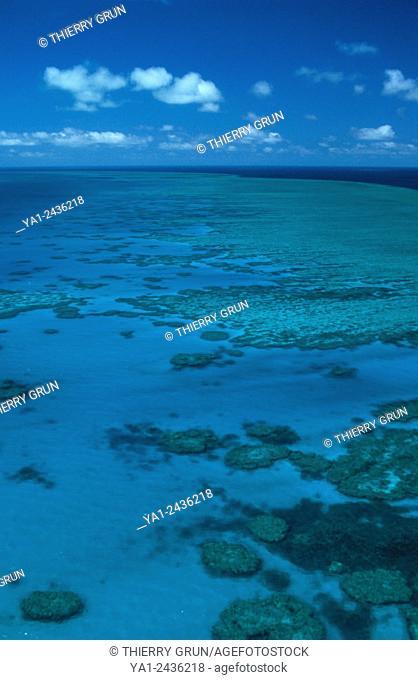 Australia, Queensland, north of Whitsunday islands, Greef barrier reef, Hook reef aerial view
