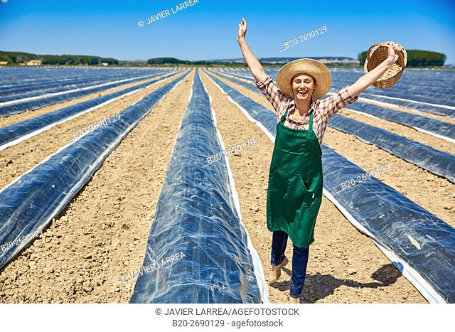 Farmer, Growing asparagus, Agricultural field, Cadreita, Navarre, Spain