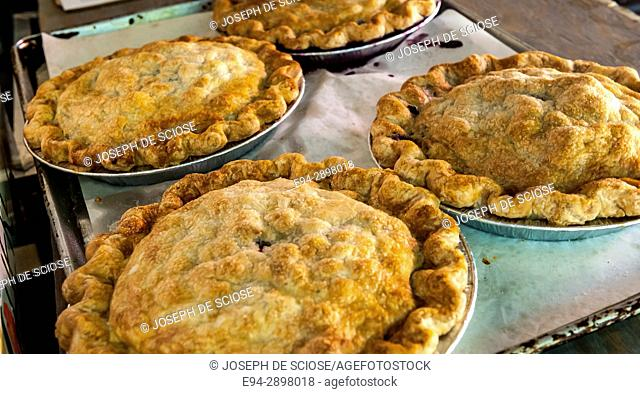 4 freshly baked pies on display in a bakery