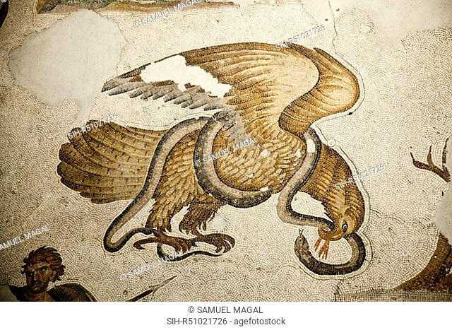 The Mosaic, dated from the 6th Century, depicting a battle between the eagle and the serpent which was a frequent subject in ancient art