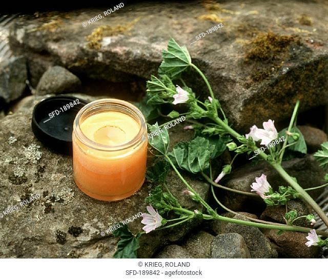 Mallow ointment in crucible and a sprig of mallow