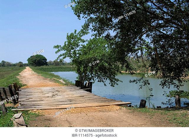 Fazenda Pouso Alegre, Pantanal landscape, UNESCO World Heritage Site and Biosphere reserve, Mato Grosso, Brazil
