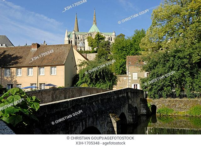 Bridge of Minimes over the Eure river with the Cathedral of Chartres background, Eure-et-Loir department, Centre region, France, Europe