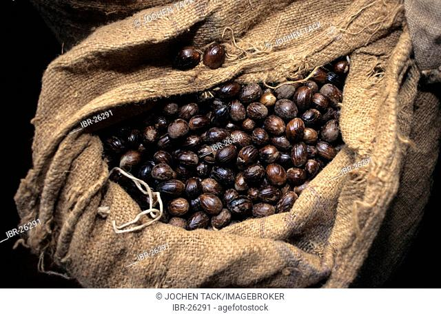GRD, Grenada: nutmeg apples. Grenada is the scond largest producer of nutmeg in the world