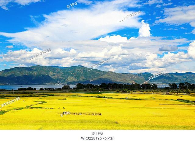 mountain;Dali; Yunnan; China