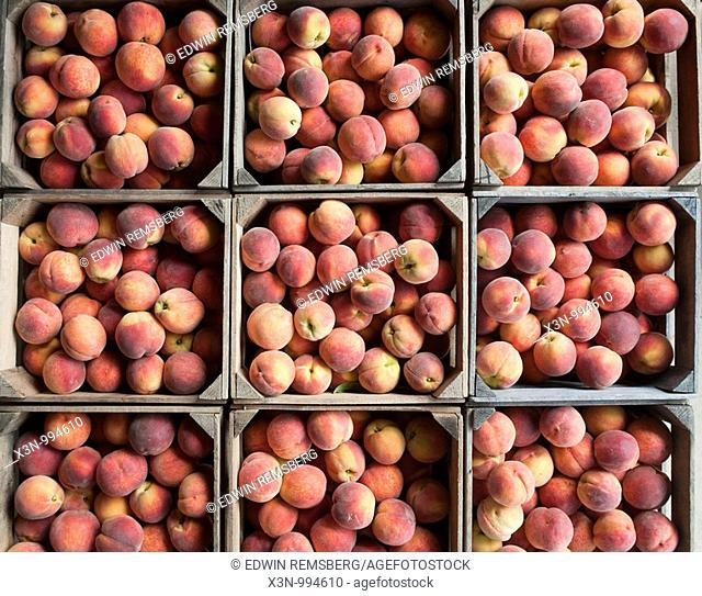 Peaches , Owings Maryland