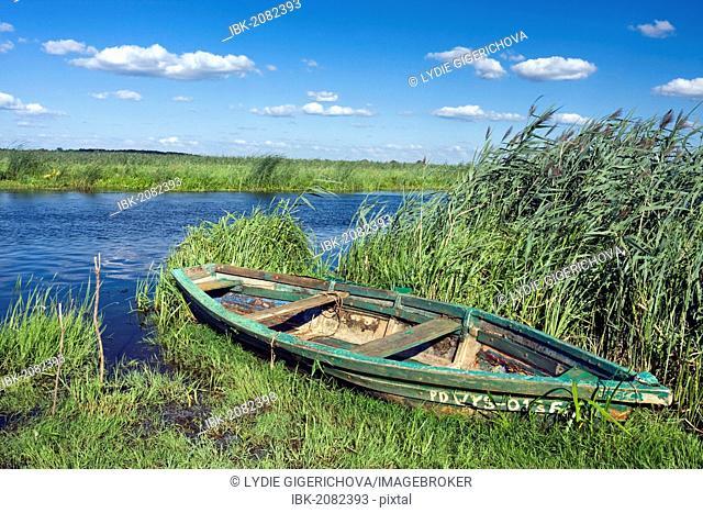 Boat and Narew River near Waniewo village, Narwianski National Park, Poland, Europe