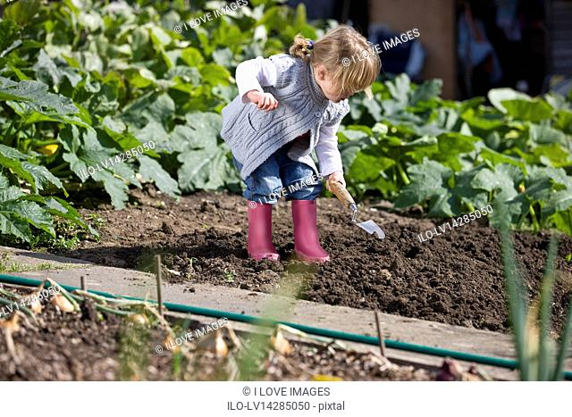 A young girl digging on an allotment