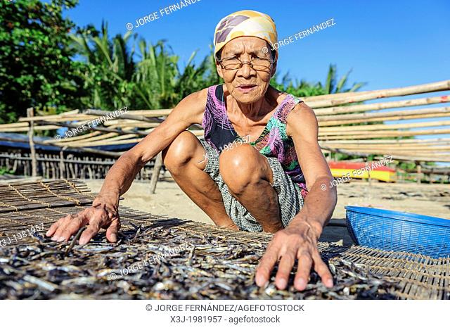 Woman drying fish on the sun, Bulalacao, Philippines, Asia