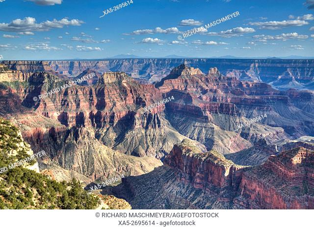 View from Bright Angel Point, North Rim, Grand Canyon National Park, UNESCO World Heritage Site, Arizona, USA