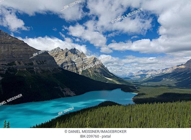 View of the wooded shoreline of Peyto Lake and Mistaya Valley with Mount Patterson in the background, Waputik Mountains, Banff National Park, Alberta, Canada