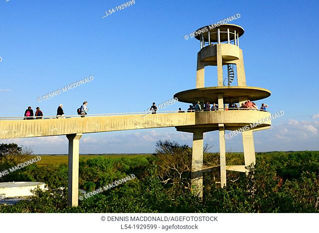 Shark Valley Visitors Observation Tower Everglades National Park Florida US