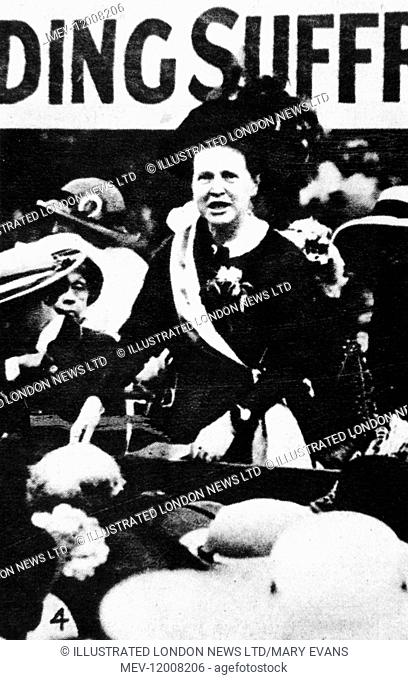 Millicent Garrett Fawcett (1847-1929), suffragist and early feminist, co-founder of Newnham College, Cambridge, and president of the moderate National Union of...