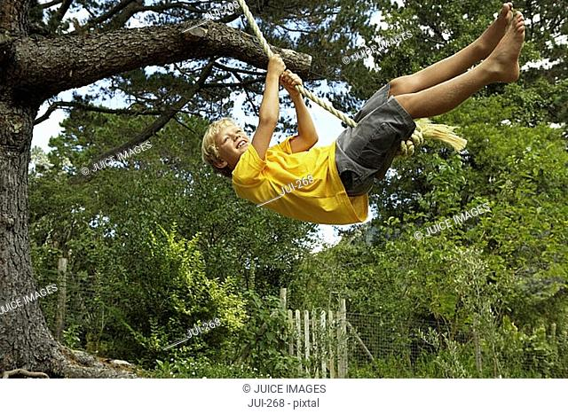 Boy 7-9 swinging on rope swing hanging from tree in garden, smiling, side view