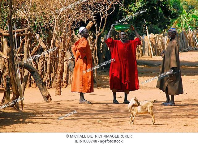 Three men of the Jolla tribe conversing on a village street in Tunami Tenda, Gambia, Africa