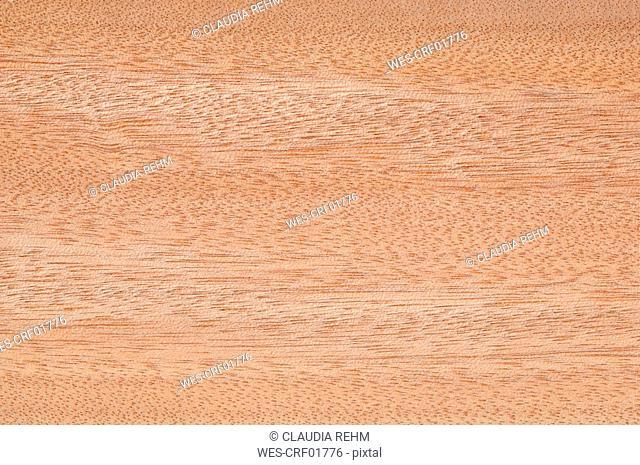 Wood surface, Gaboon Wood Aucoumea klaineana full frame